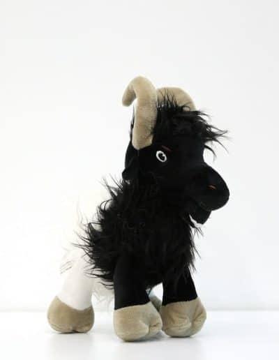 Walliserská koza